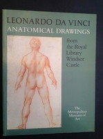 Thumb_leonardo-vinci-anatomical-drawings-from-royal-library-38defa1c-eb18-4e2e-a591-8ac64d0c546d